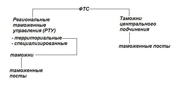 состав таможенных органов